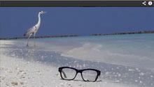 Munic Eyewear Werbeclip